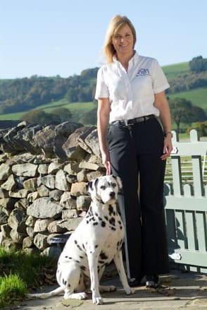 Barking Mad Lee Bronte dog sitting business franchise dalmatian dog