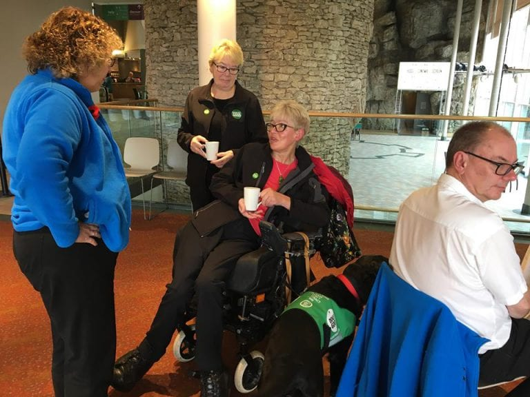 Barking Mad Dog Sitters Meet Dogs For Good Assistance Dog And Handler