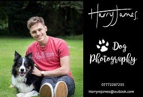 Dog photography South & West Oxfordshire Barking Md