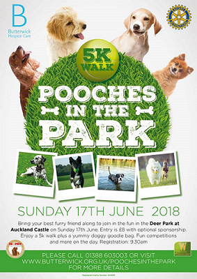 Barking Mad Durham walk in the park pooches in the park durham.