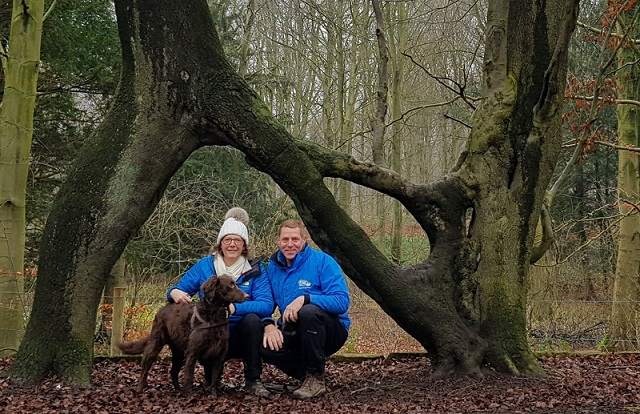 We Love Taking Our Dogs To Meet The Tree. barking mad leeds dog sitting home boarding
