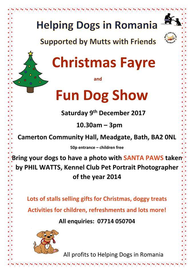 Barking Mad Bath & South Somerset dog sitters attend Christmas fayre