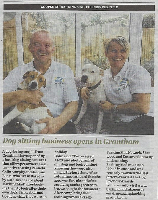 Barking Mad dog sitting news in Grantham Journal