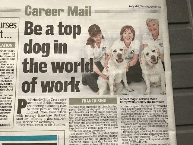 Animal Magic – Barking Mad's Kerry Wells, centre and her team