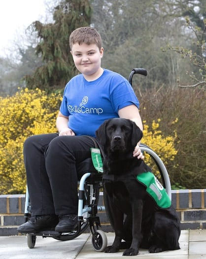 dogs for good offer a helping paw to this boy in his wheelchair