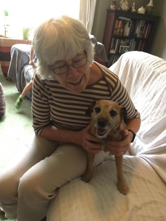 10 Betty From North Muskham With Sue Barking Mad Dog Sitting Home Boarding Newark