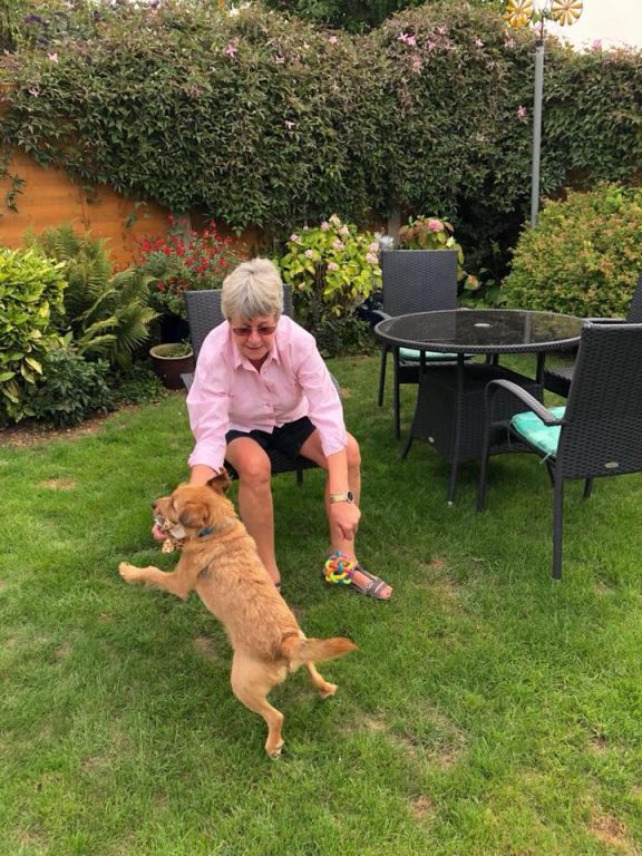 6 Sid With Janine In Grantham Barking Mad Dog Sitting Home Boarding Newark