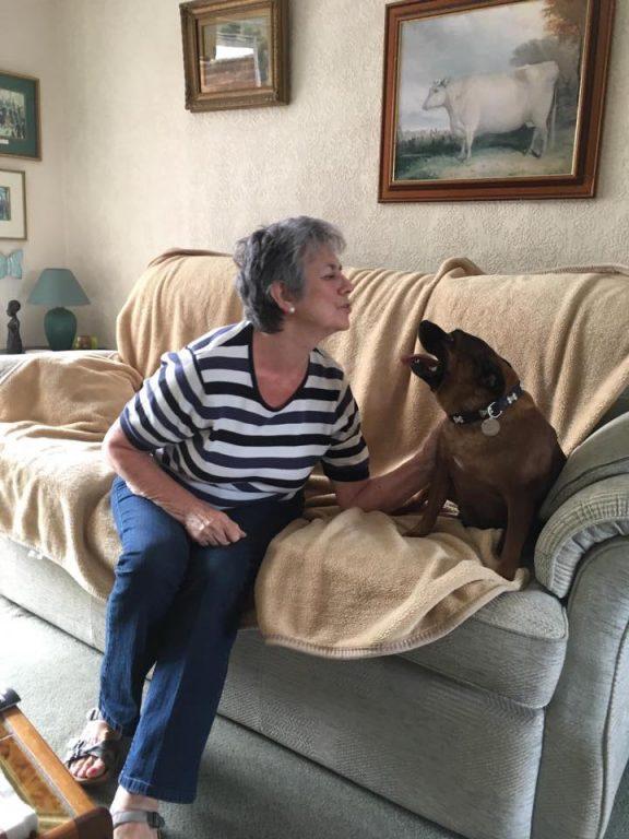 8 Tigger With Delia Barking Mad Dog Sitting Home Boarding Newark