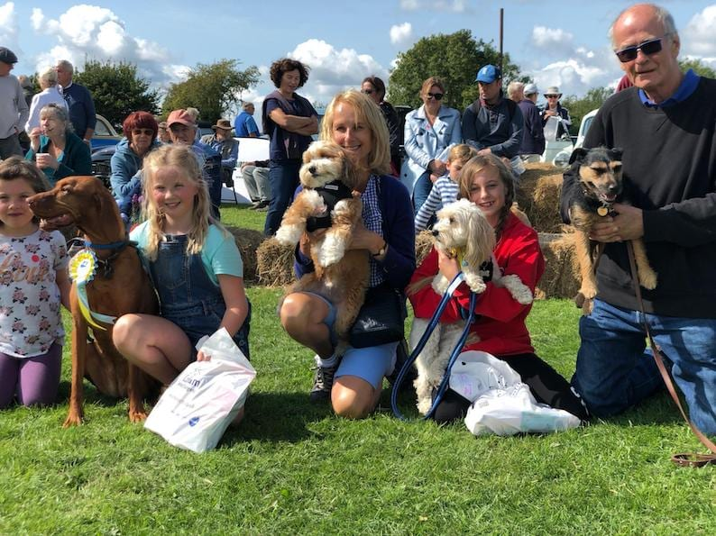 Our Best in Show finalists – with Pip the Vizsla being crowned winner!