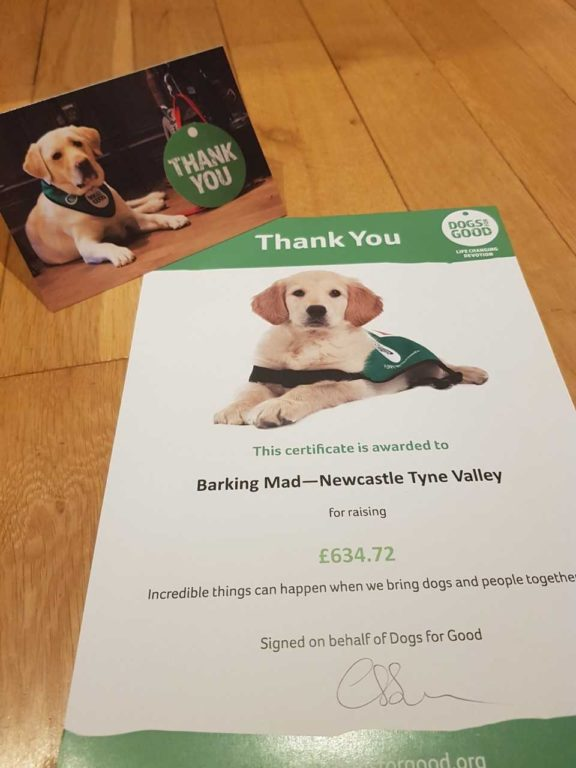Dfg Thank You 2018 Dog sitting home boarding carrie jarvis newcastle Barking Mad