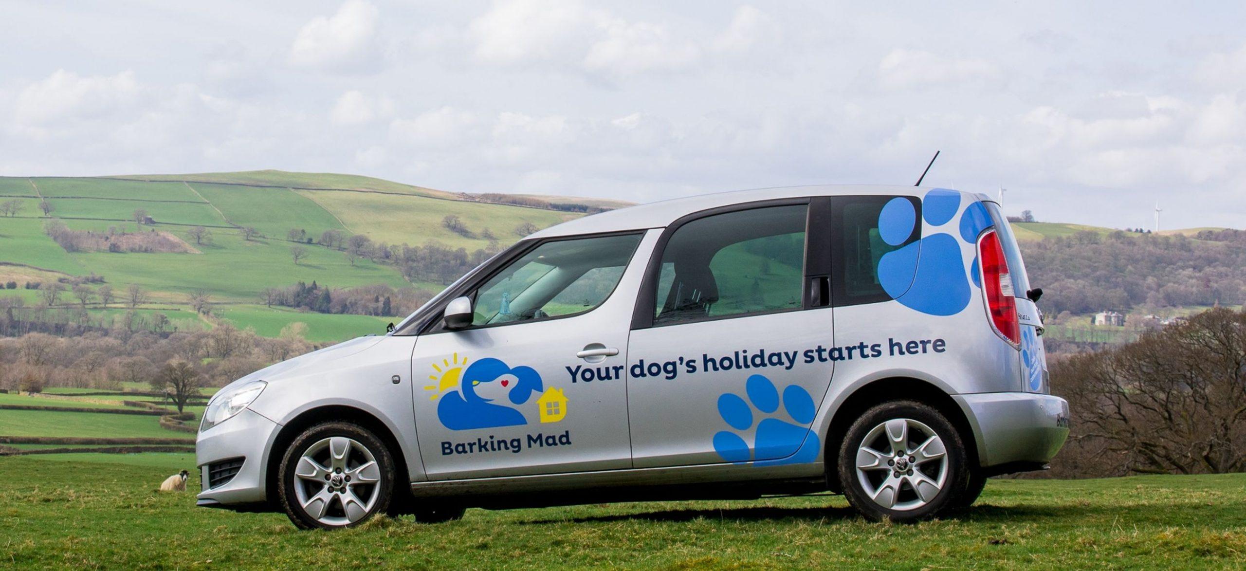 Barking Mad Dog Sitting Car On Hillside