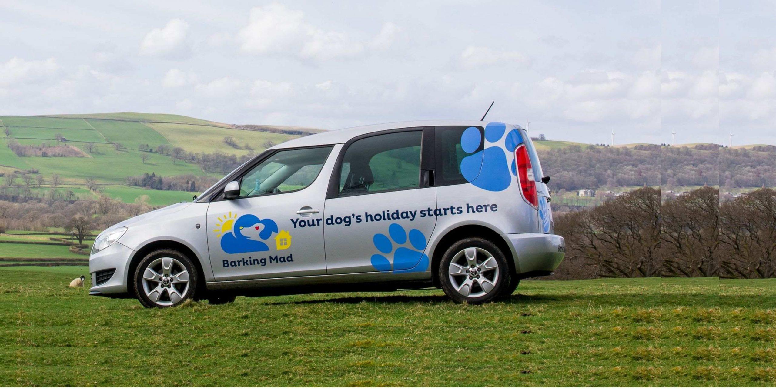 Barking Mad Dog Sitting Car On Hillside Crop