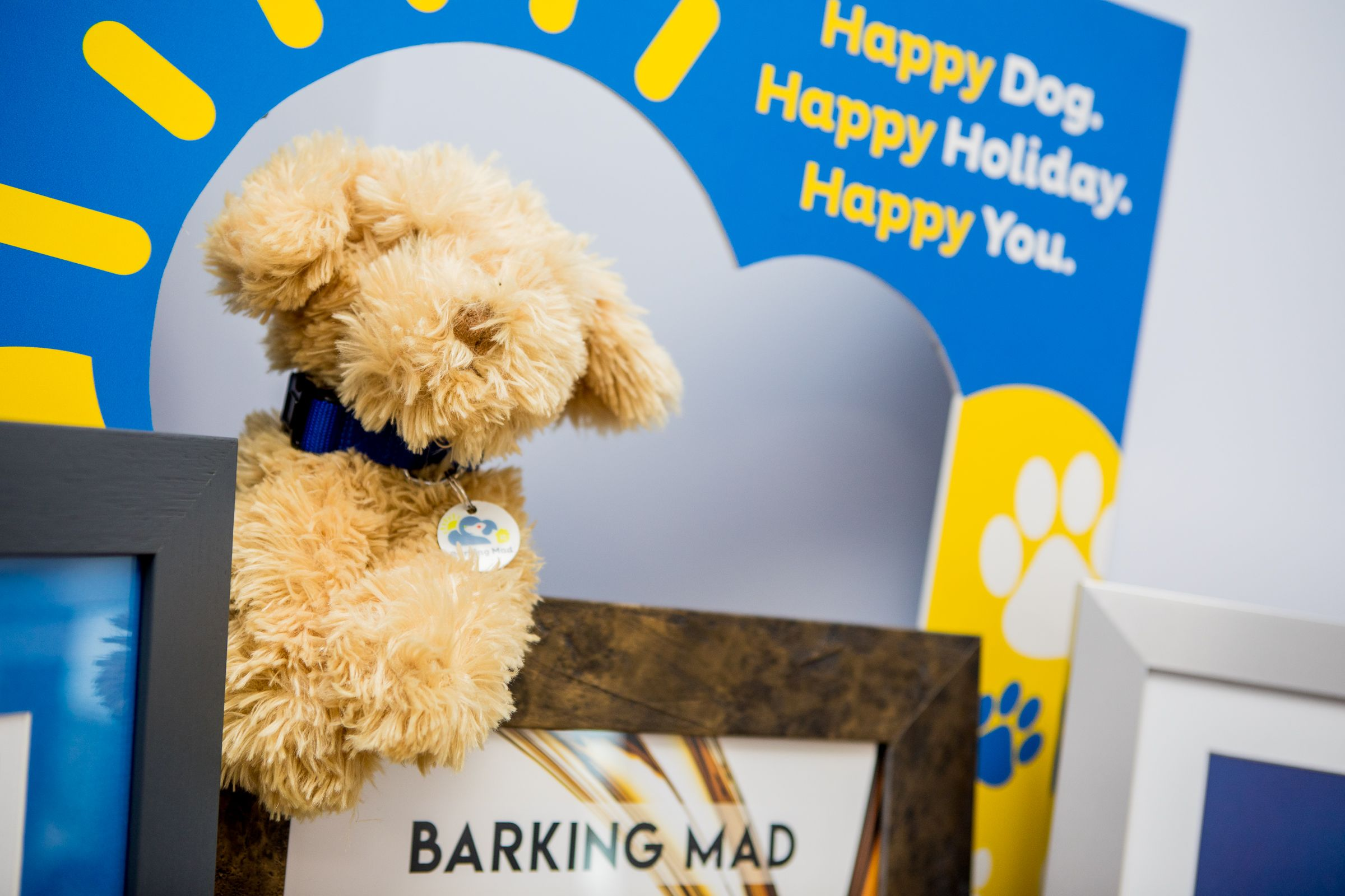 Barking Mad Office Dog Home Boarding Happy Holiday Franchise