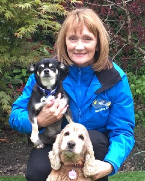 Sue Seward Barking Mad Dog Sitting Home Boarding Tyne And Wear