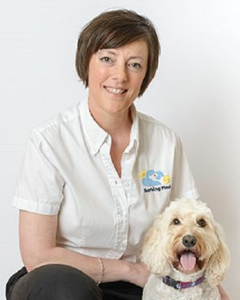 Tina Young Barking Mad Dog Sitting Home Boarding Alnwick