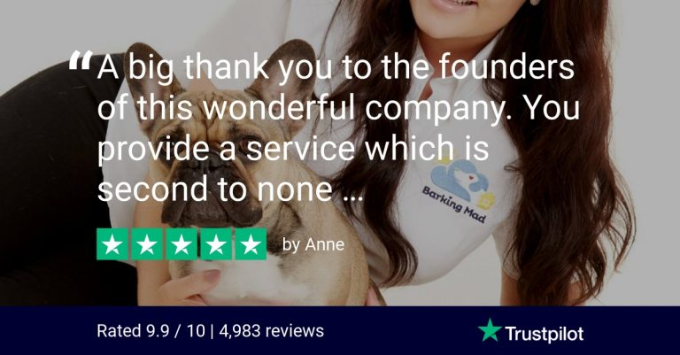 Trustpilot Review Barking Mad Dog Sitting Home Boarding Five Star