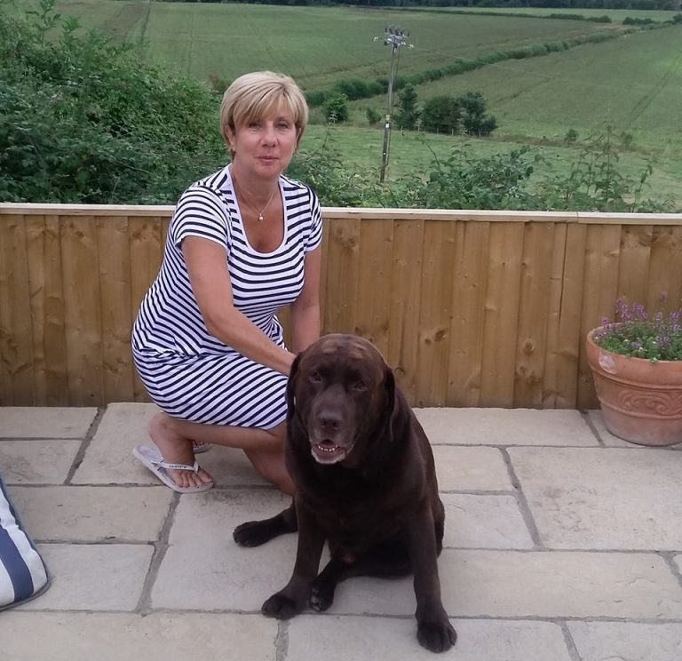 barking mad host oxfordshire home boarding dog sitting