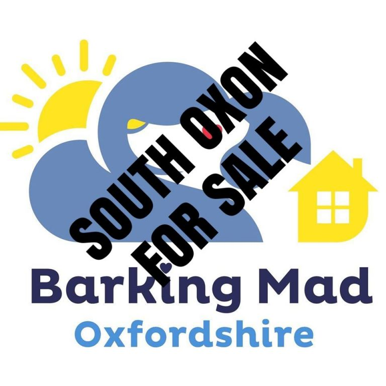 Barking mad oxfordshire business for sale franchise dog sitting home boarding