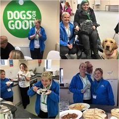 Barking Mad Banbury Spending The Day At Dogs For Good Hq In Banbury Meeting Lots Of Lovely People And Incredible Dogs.