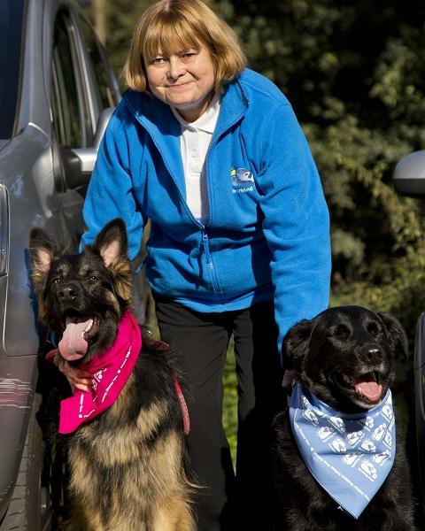 Anne Kessell Barking Mad Dog Sitting Home Boarding Telford