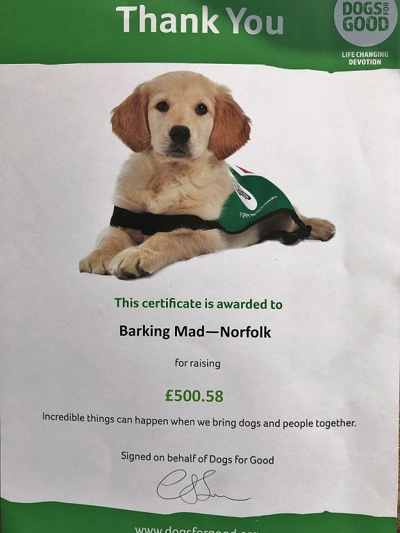 Sharon Booden barking mad Norwich home boarding dog sitting.