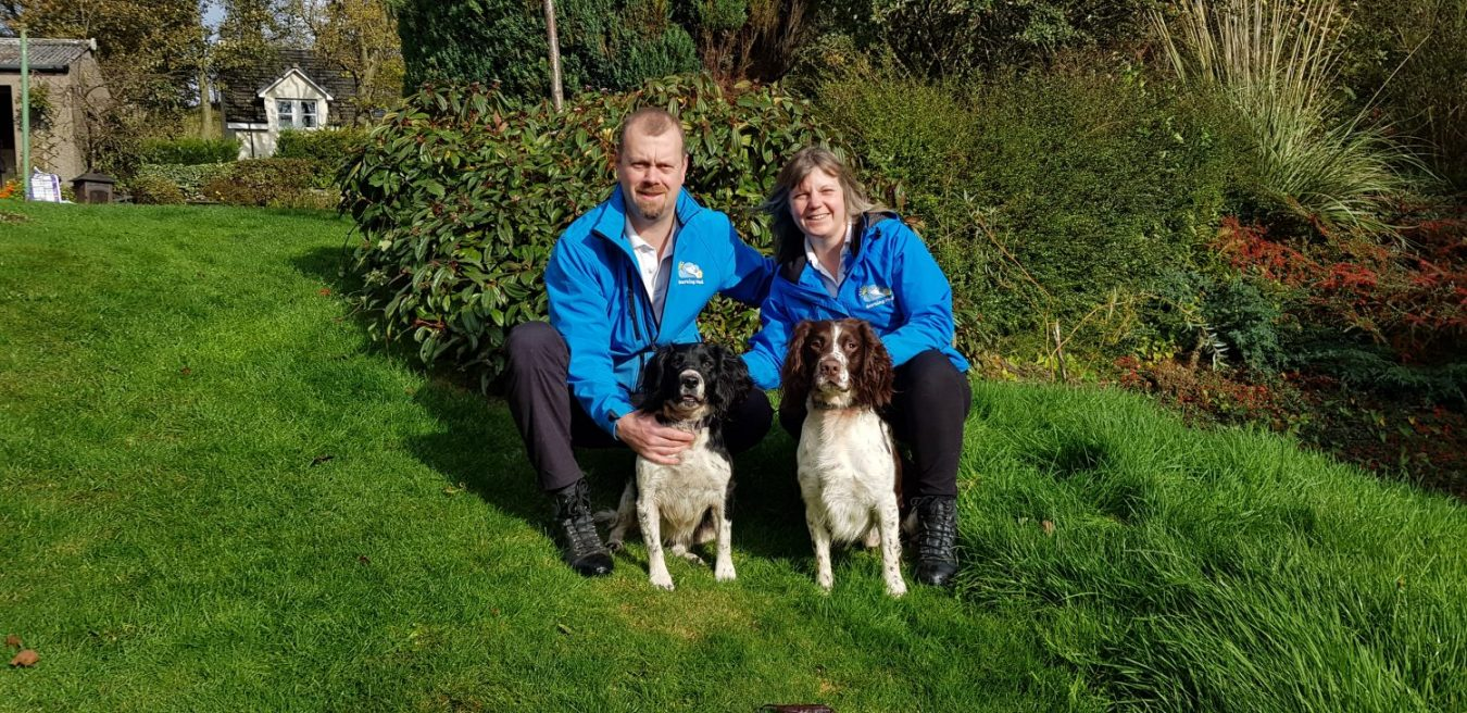 Owning a Barking Mad dog sitting business has allowed John and Elaine to realise their dream of working with dogs