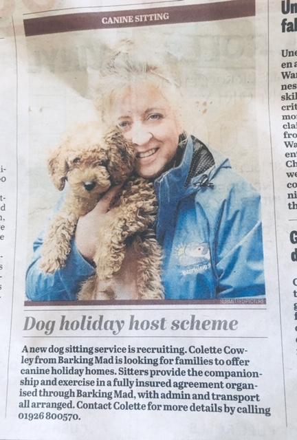 Barking Mad owner Colette Crowley stratford upon avon dog sitting home boarding