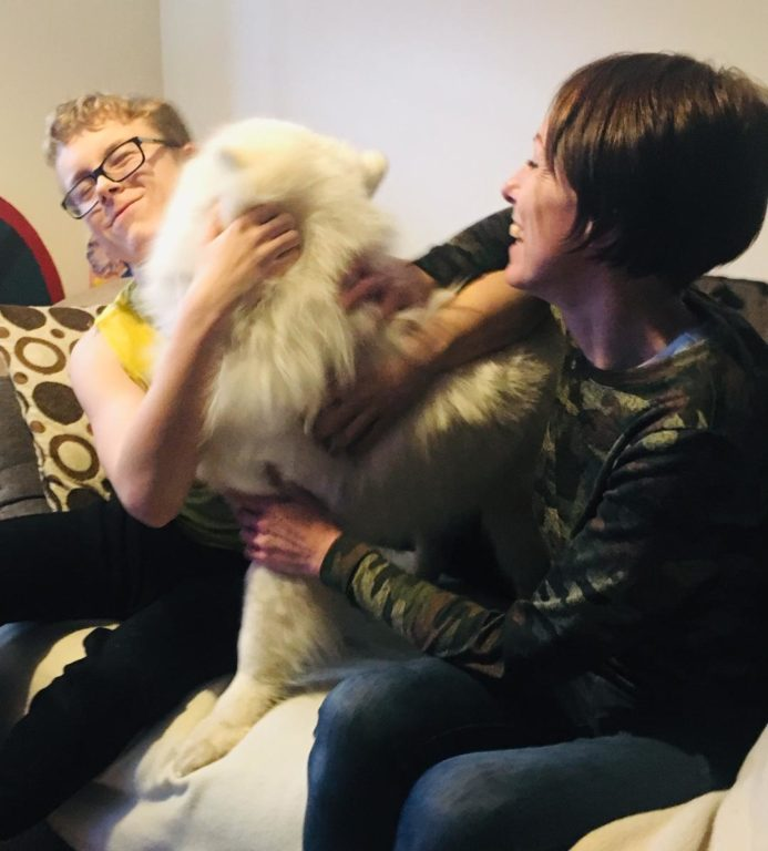 barking mad stratford upon avon dog sitting home boarding christmas