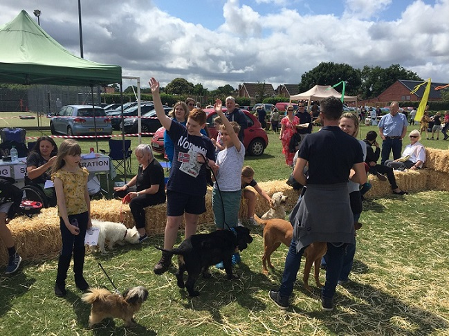 Dog Show Success Barking MAd South Norfolk dog show