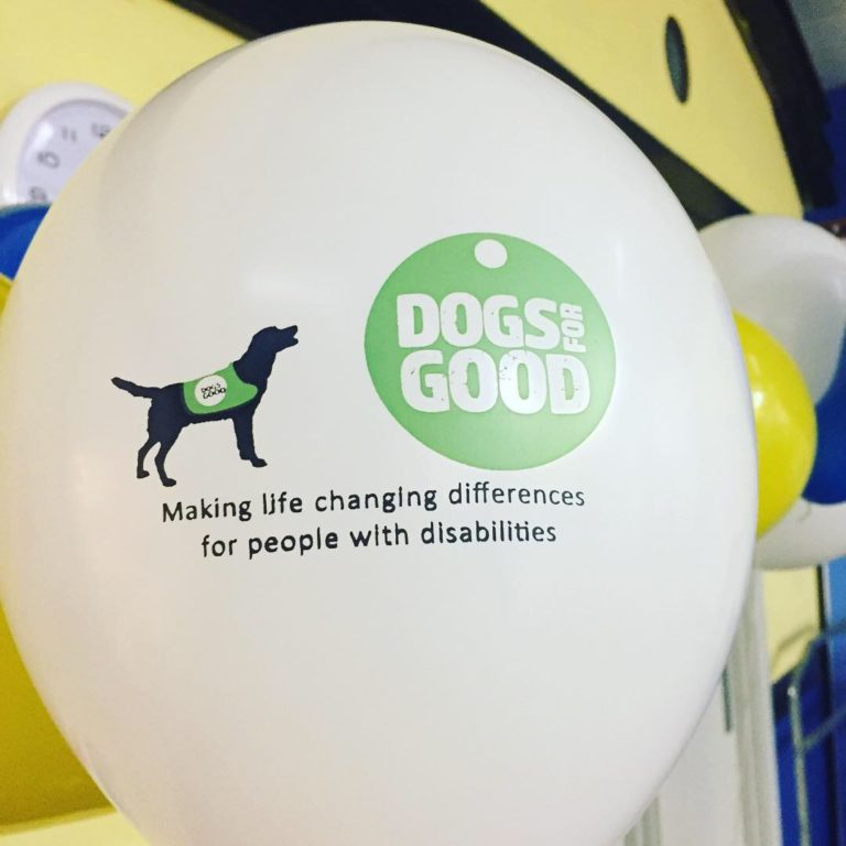 Dogs For Good 2 Barking Mad South Norwich dog sitting home boarding host family