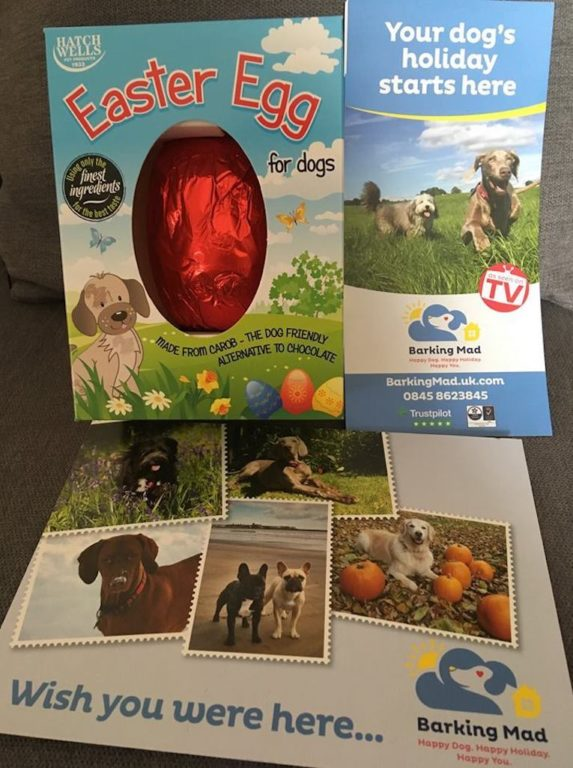 EastBarking Mad Cotswold holiday dogs got a special Easter treat!er Eggs