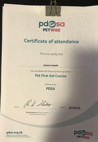 First Aid Certificate Pdsa