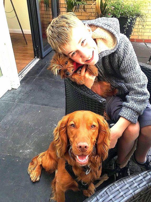Hamish barking mad south norfolk dog sitting home boarding