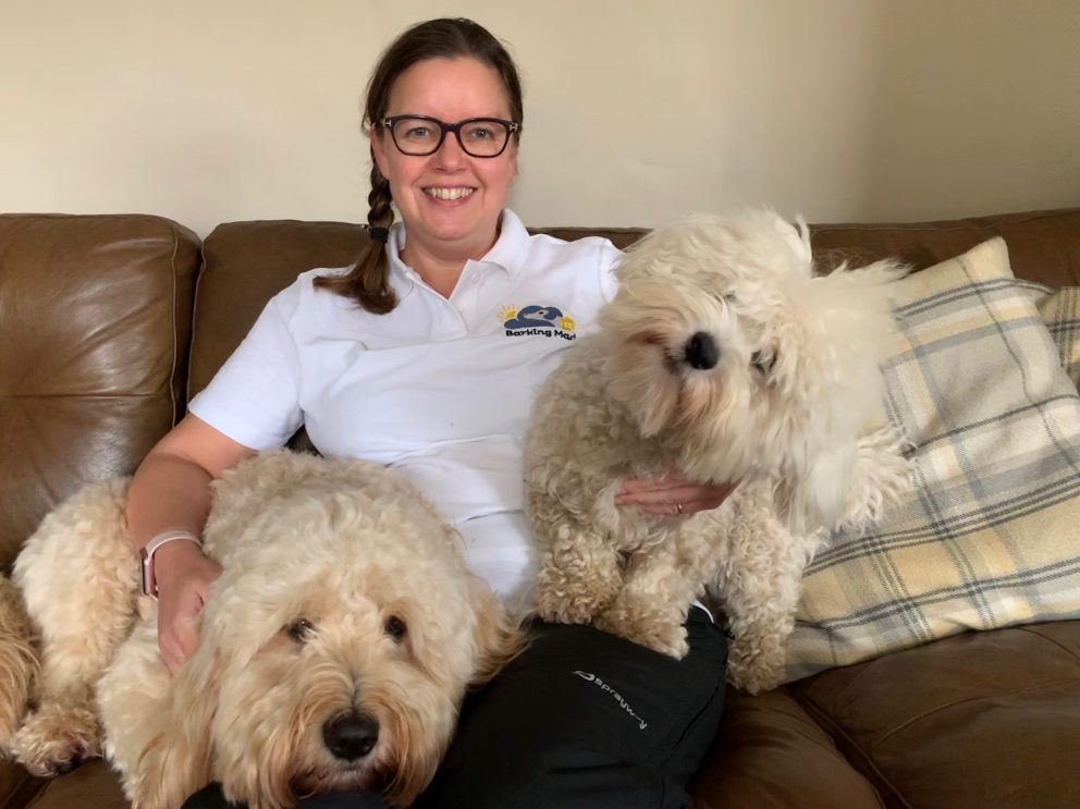 Amanda is delighted to have become a Barking Mad dog sitting professional working with dogs