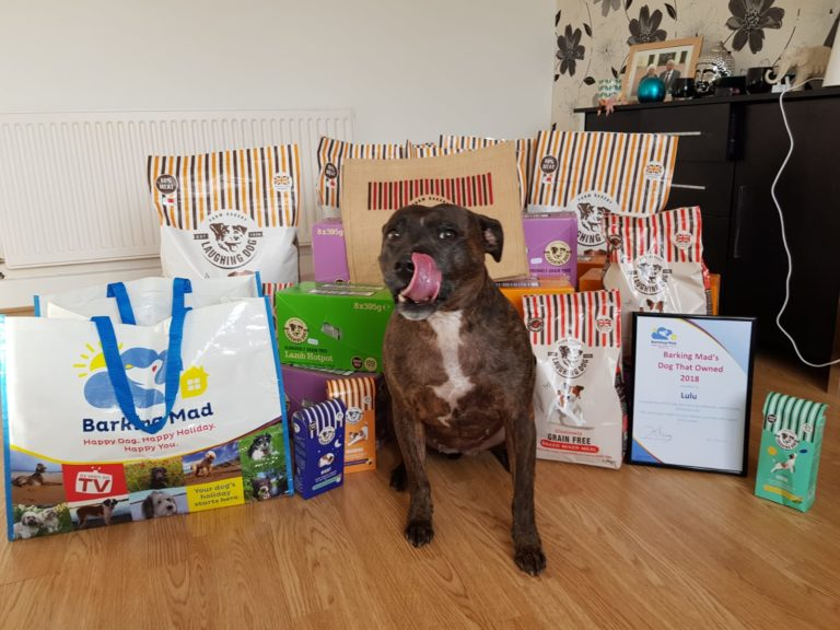 Barking Mad Dog Care Prize Winner Lulu With Laughing Dog Food