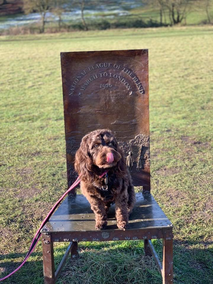 Visiting historic sites with your dog is a great way to have fun