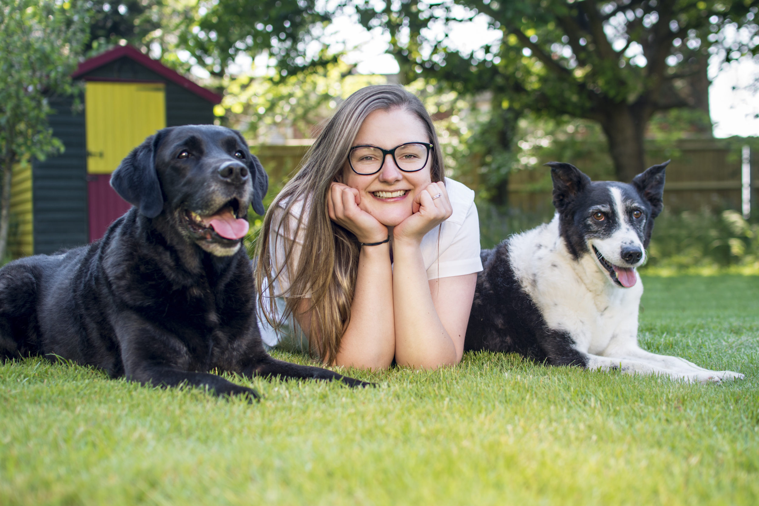 Barking Mad's 5 Free Ways to Have Fun with Your Dog