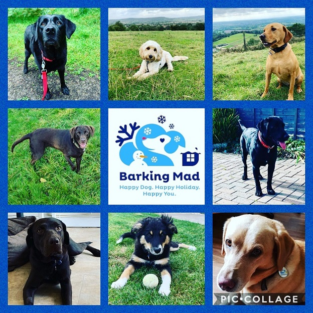 Photo 3 Happy Customers On Their Barking Mad Holiday
