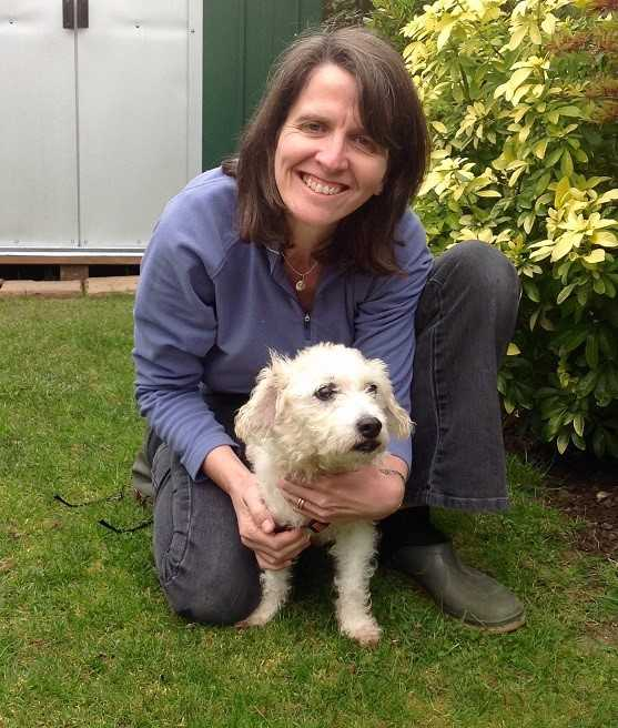 Lucy cares for dogs like Gabby with Barking Mad Chichester